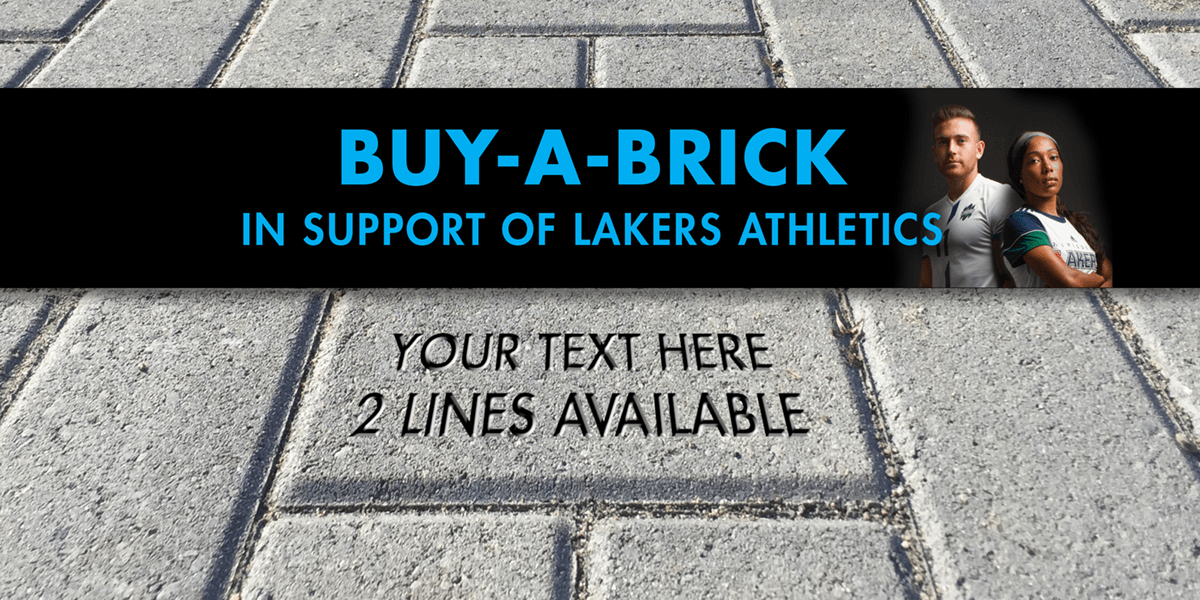 homepage slider nov6 Buy-A-Brick Campaign