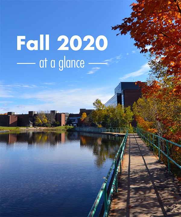 Fall 2020 At A Glance